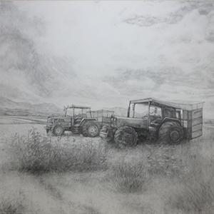 昼下がりのキャベツ畑